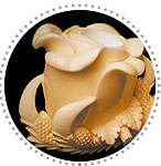 Claw Block Meerschaum Pipes